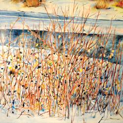 Vrbina, olej na plátně 100x80cm, 19 000 Kč