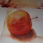 Jablko, olej na plátně, rok 2014, cena 10 000 Kč